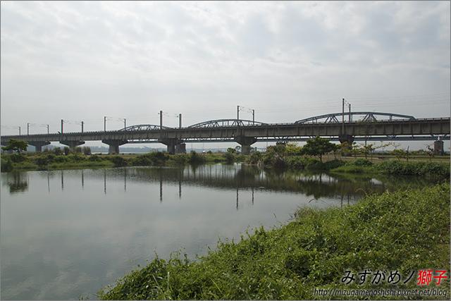 高雄舊鐵橋溼地公園_18.jpg