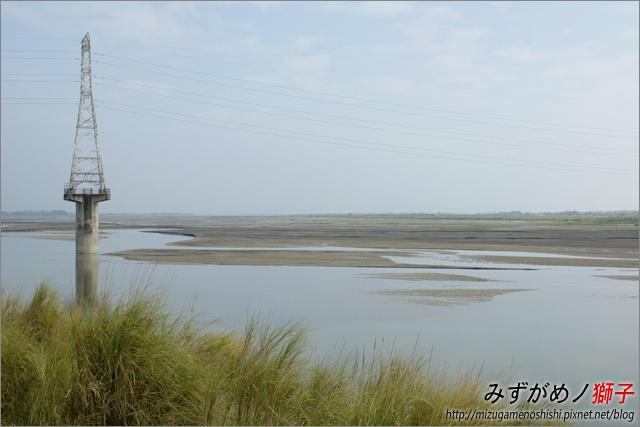 高雄舊鐵橋溼地公園_20.jpg