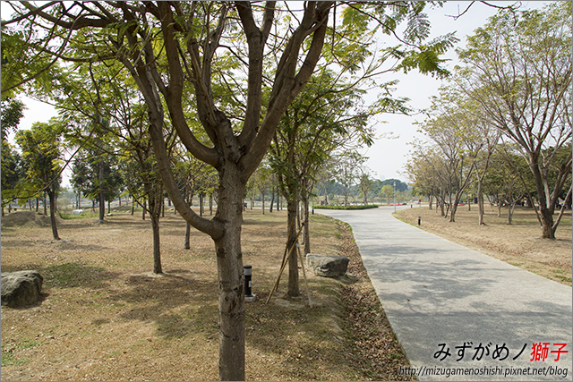高雄衛武營都會公園_8
