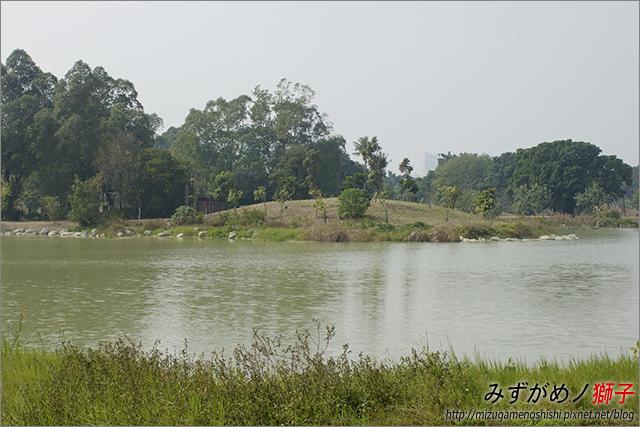 高雄衛武營都會公園_9
