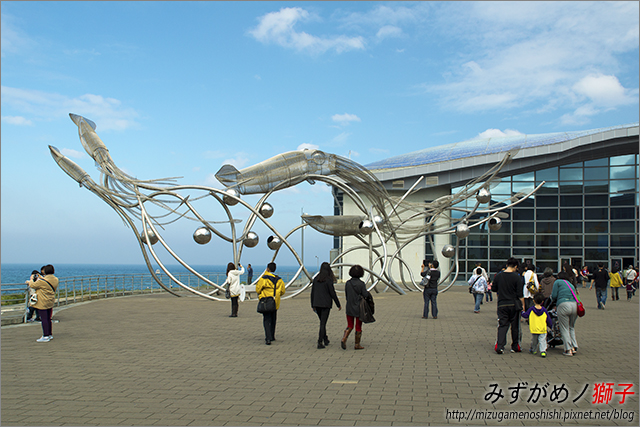 屏東海洋生物博物館_37