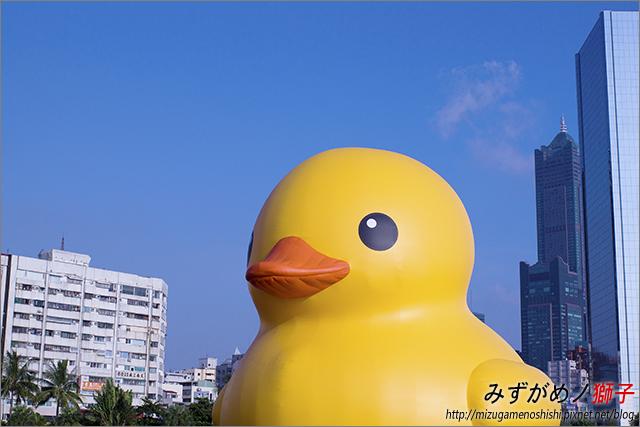 高雄黃色小鴨_18