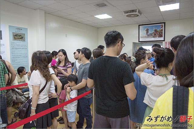 臺南綠色隧道_4.jpg