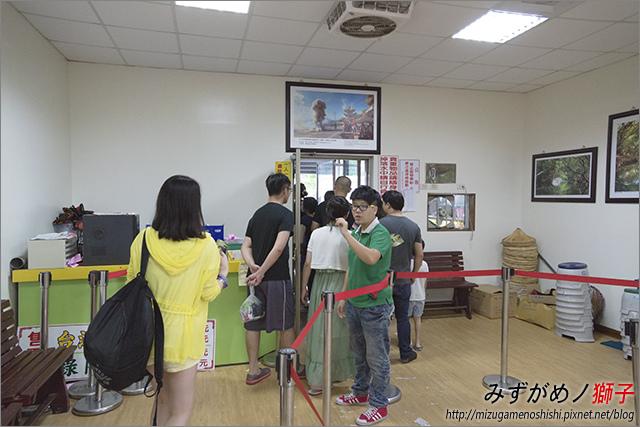 臺南綠色隧道_5.jpg