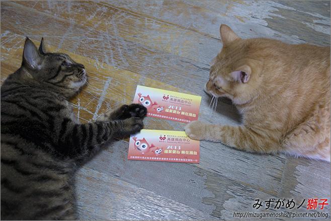Lovely 童話_2.jpg