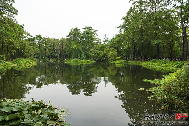 高雄大東公園_19.jpg