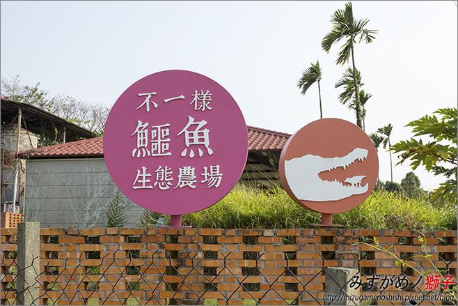 不一樣鱷魚生態農場_1.jpg
