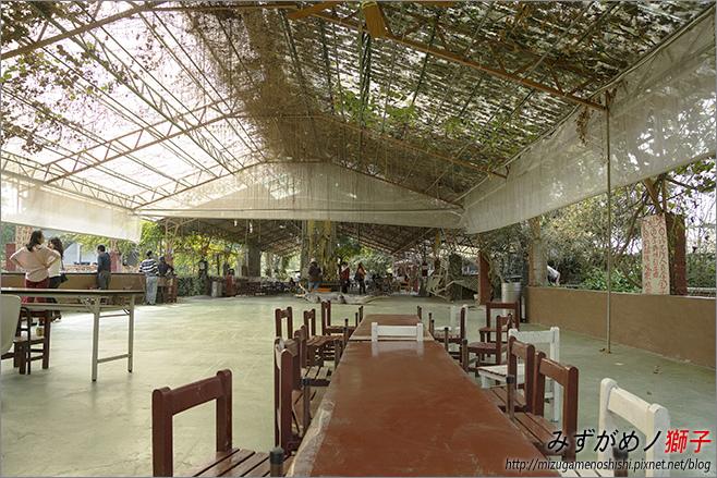不一樣鱷魚生態農場_26.jpg