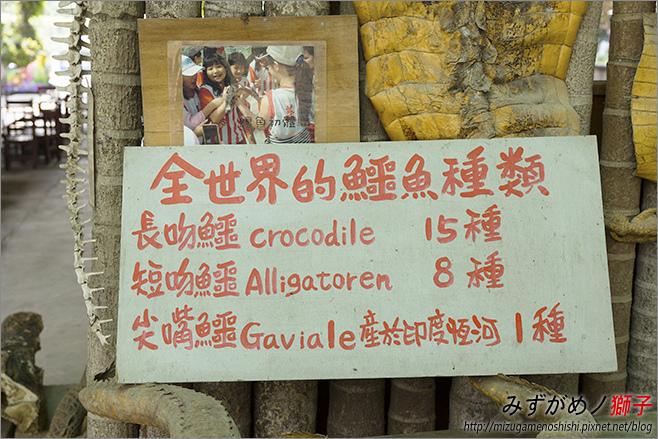 不一樣鱷魚生態農場_28.jpg