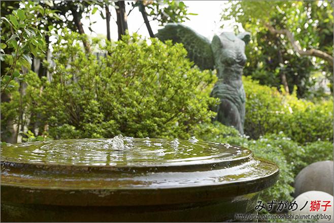 Q Garden_9.jpg