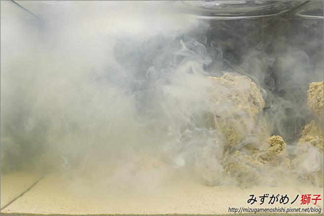 海水缸養水_11.jpg