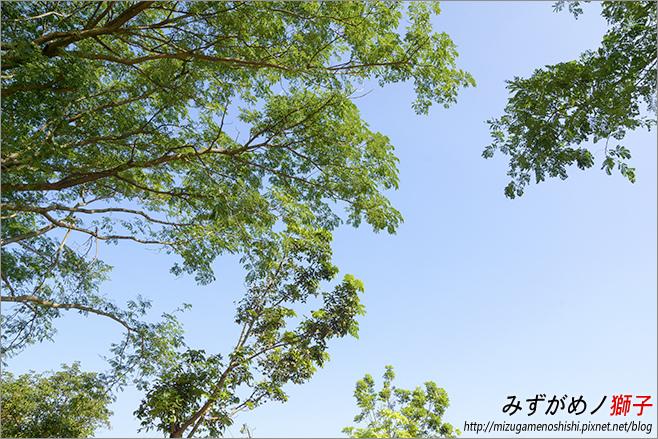 高雄大學_12.jpg