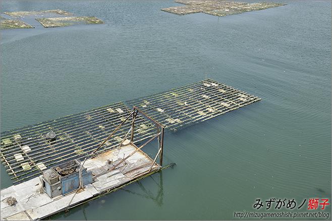 漁光島_5.jpg