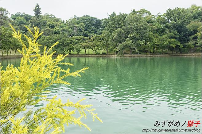 澄清湖_83.jpg