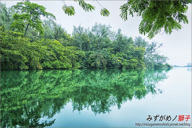 澄清湖_87.jpg