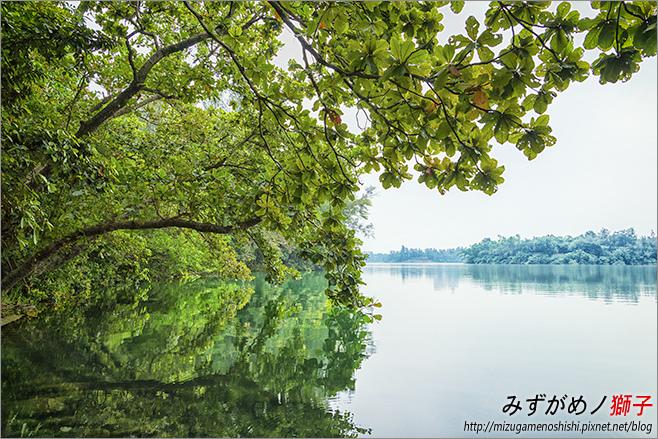 澄清湖_88.jpg