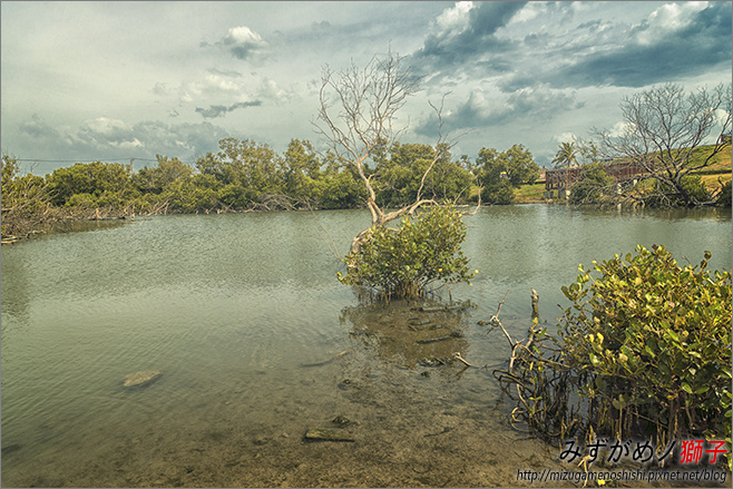 海洋濕地公園_1.jpg
