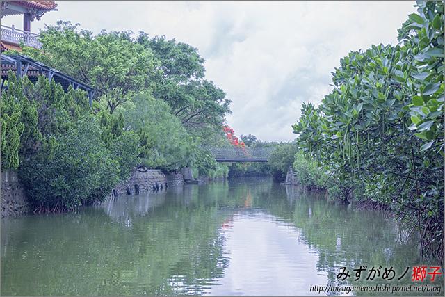 臺南綠色隧道_10.jpg
