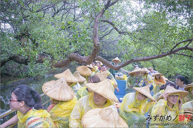 臺南綠色隧道_23.jpg