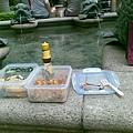 20090814 野餐with兒子.jpg