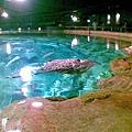 43海洋館4.jpg