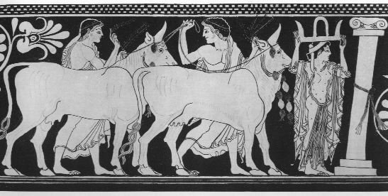 hercules and the stable