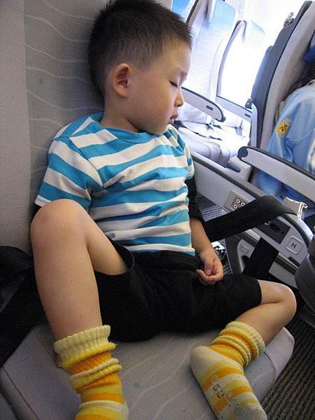 上飛機就睡垮了