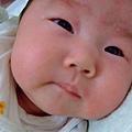2007_04280194.JPG