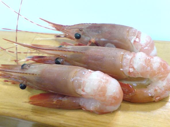 DSC01901-牡丹蝦.JPG
