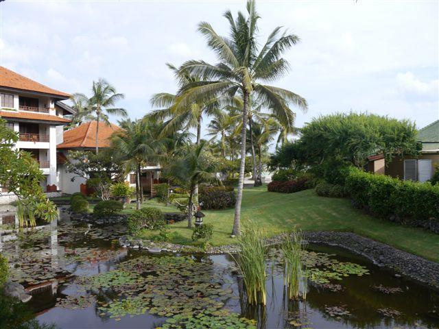 Garden View看的就是飯店內的造景