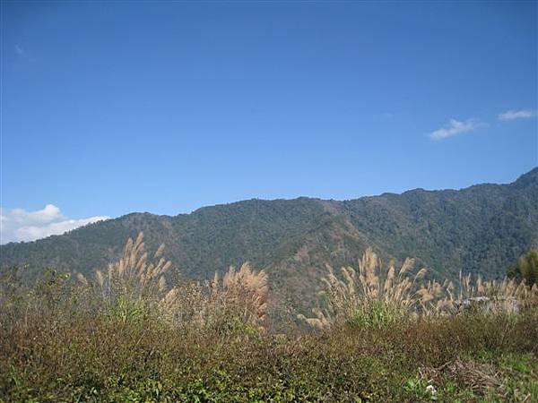 芒草、群山、藍天