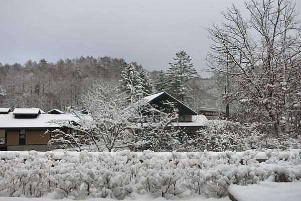 前晚下了大雪,積雪超深