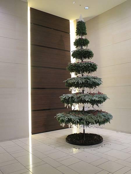 一樓的聖誕樹