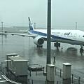 剛到羽田,下大雨