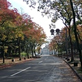 早上沿著名古屋城慢跑