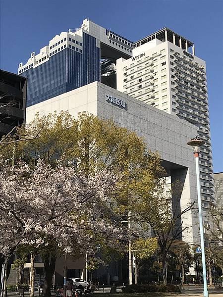大阪醫專、Westin、新梅田City