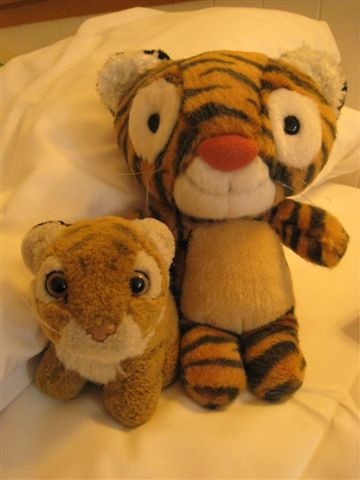 阿西娜的兒子 小虎以及Kola弟