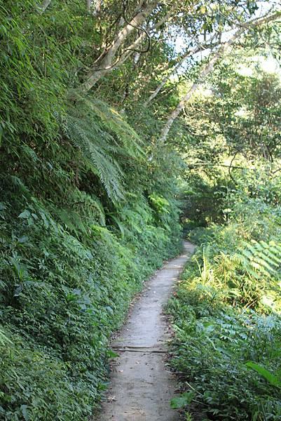 100709紅河谷步道 (3).JPG