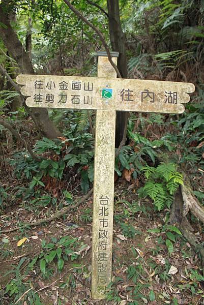 金面山 (13).JPG