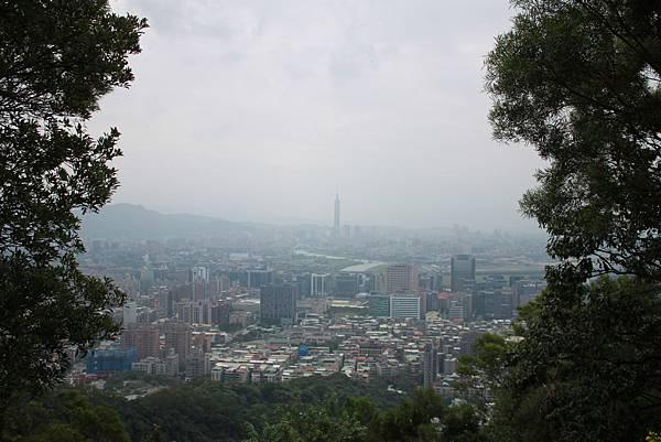 金面山 (16).JPG