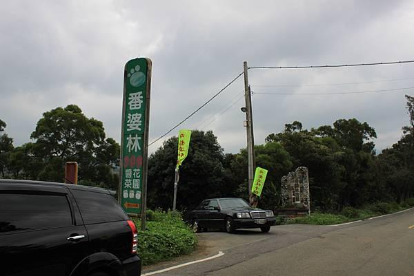 青山瀑布山婆林 (47).JPG