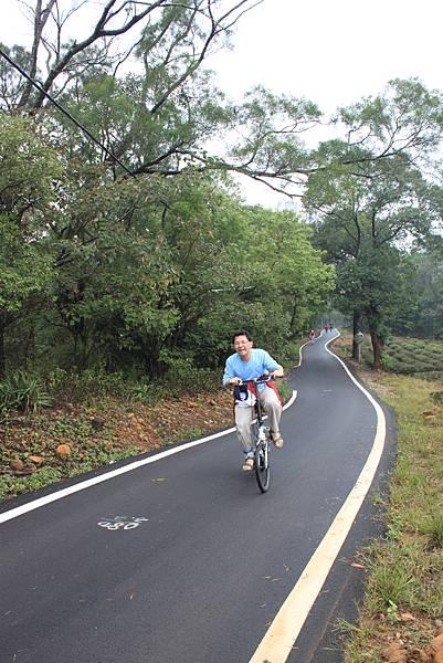 1112銅鑼自行車道杭菊IMG_7128 (6).JPG