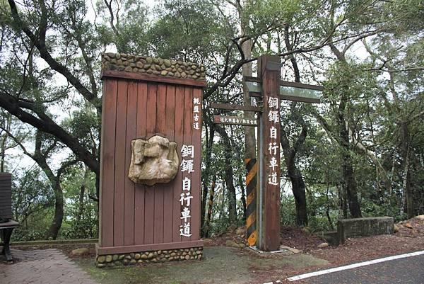 1112銅鑼自行車道杭菊IMG_7128 (46).JPG