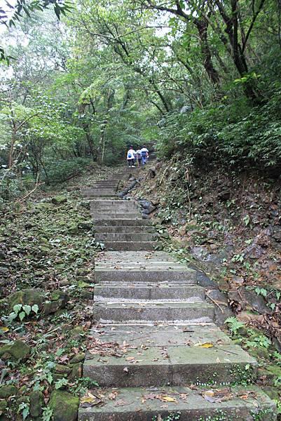 1204登五分山 (11).JPG