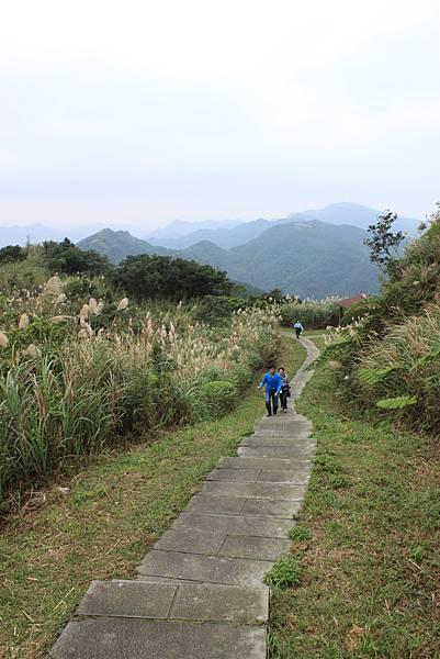 1204登五分山 (29).JPG