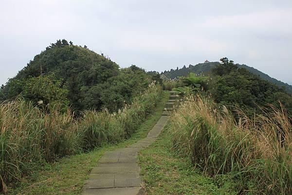 1204登五分山 (33).JPG