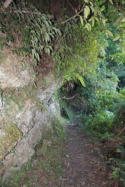 1218大艽芎古道溪州山 (12).JPG
