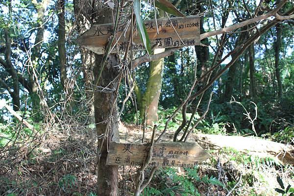 1218大艽芎古道溪州山 (17).JPG