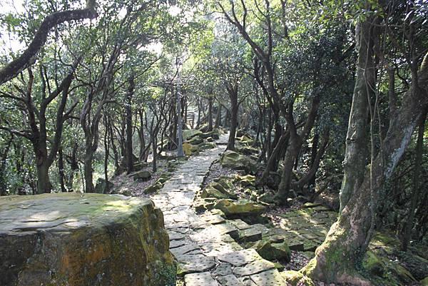 1225汐止大尖山四分尾山 (14).JPG