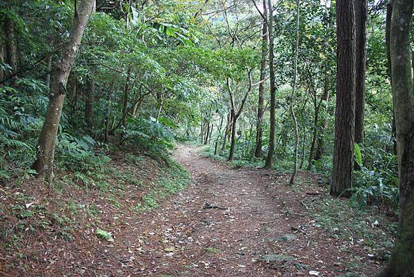 0108大溪白石山 (3).JPG